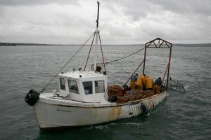 Loch Ryan Oyster Fishery Co. Ltd